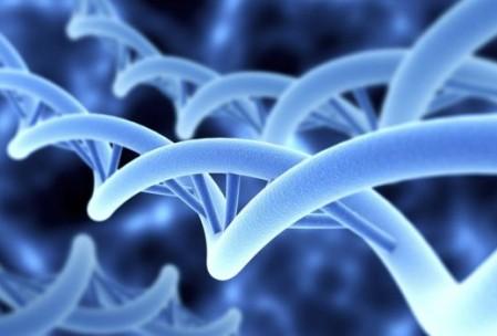 bacteries-vie-sol-permaculture